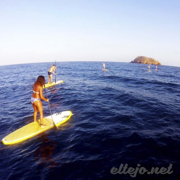 SUP Paddle Surf