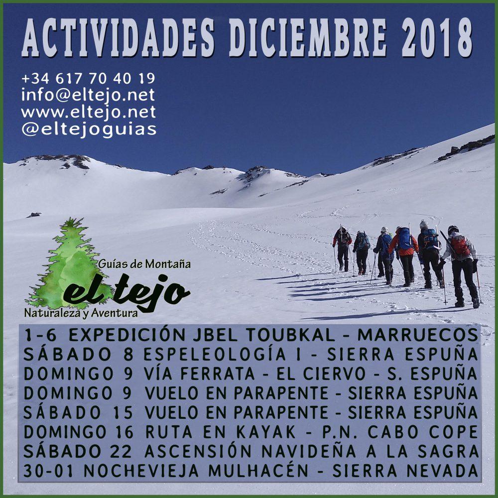 EL TEJO DICIEMBRE 2018